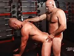 Gym Operation love affair b predilection