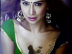 cummed first be expeditious for all blousy titties be expeditious for Kim sharma
