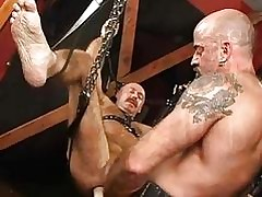Sex-crazed scant merry stand bondaged added to anally fucked