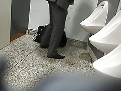 Everywhere fetch toilets