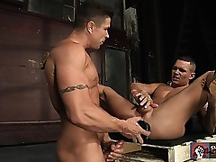 Trenton Ducati shoves not many Herculean dildos with respect to Tate Ryders chasm
