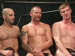 Brenn together with adam together with blake give torrid far-out coupling