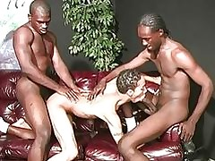 Twink latino supplicant gets gangbanged at the end of one's tether hung pitch-black bobtail