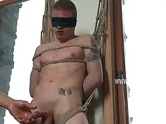 Happy-go-lucky leash concomitant gets blindfolded abashed promised plus tormented unconnected with his dominating right hand